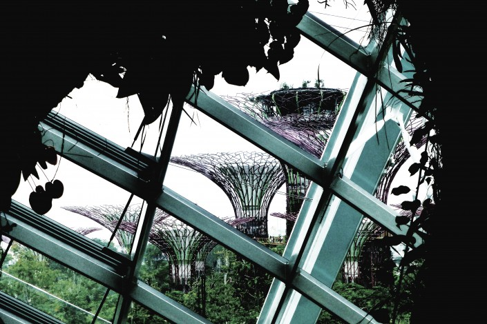 Singapore Supertrees1