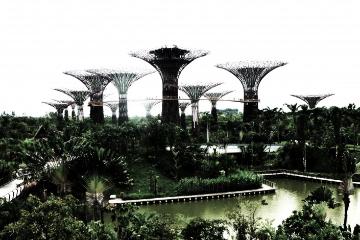 Singapore Supertrees2